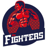 MMA fighter. Vector of MMA fighter design, text easily to remove Stock Image