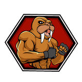 MMA fighter walrus. Vector illustration Royalty Free Stock Images