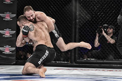 Mma fighters fight at the ring. Kyiv, Ukraine -March 13, 2017: mma fighters fight at the ring fight at the championship in Palace of sport in Kiev, Ukraine royalty free stock photos