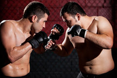 MMA Fighters during a fight Stock Photography