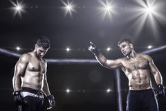 MMA fighters in octagon arena before fight. Two mma fighters in cage before fight royalty free stock images