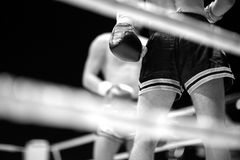 MMA fighters at the ring, monochrome Royalty Free Stock Images