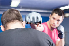 Mma fighters at training Royalty Free Stock Photos