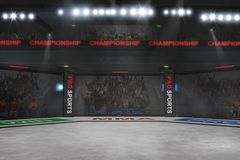 Mma fighting stage side view under lights 3d rendering. Empty mma arena under lights with spectators on the background 3d rendering Stock Photo