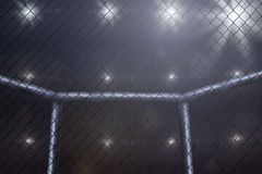 MMA fighting stage side view under lights. Not blurred. Stock Images