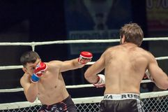 MMA or Fights without rules Stock Photo
