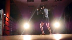 MMA, het Gemengde de schaduw van de vechtsportenvechter in dozen doen als voorbereiding op een strijd Langzame Motie stock video