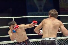 MMA lub walki bez reguł Zdjęcie Stock