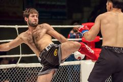 MMA lub walki bez reguł Obraz Stock