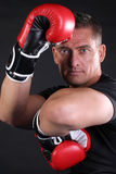 MMA Man Stock Images