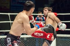 MMA or Royalty Free Stock Photos