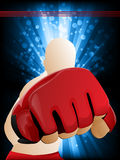 MMA Puncher. Bright lights behind a mixed martial arts fighter Royalty Free Stock Photos