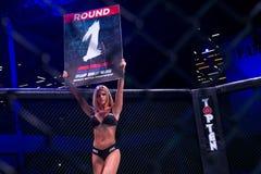 MMA walczą turnament Zdjęcia Stock