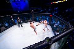 MMA walczą turnament Obraz Royalty Free