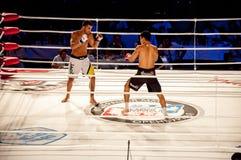 MMA walki bez reguł. Agonia Romero, Hiszpania Kula i Rinat? tumanov, Rosja Obrazy Royalty Free
