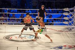 MMA walki bez reguł. Agonia Romero, Hiszpania Kultumanov i Rinat, Rosja. Obrazy Stock