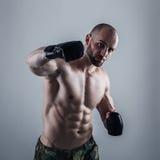 MMA wojownik Fotografia Royalty Free
