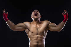 MMA wojownik Fotografia Stock