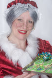 Mme Clause image stock