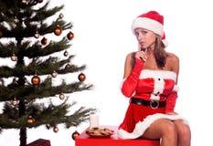 Mme sexy Santa Photographie stock libre de droits