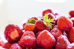 Mnóstwo świeże truskawki i czerwień Fotografia Stock