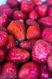 Mnóstwo świeże truskawki i czerwień Zdjęcie Stock
