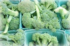 Mnóstwo brokuły Obrazy Stock