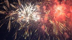 Mnóstwo fajerwerk bomby błyskają w niebie zbiory wideo
