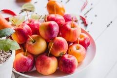 Mnóstwo jabłka na talerzu Zdjęcie Stock