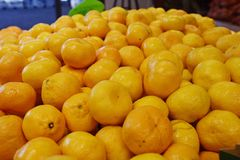 Mnóstwo mandarines lub tangerine obrazy royalty free