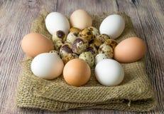 Mnóstwo przepiórki i kurczaka jajka dla malować kłamać na drewnianym stole zakrywającym z burlap Obrazy Royalty Free