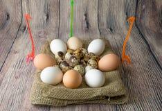 Mnóstwo przepiórki i kurczaka jajka dla malować kłamać w stosie na drewnianej stołowej parcianej pozyci obok trzy żyrafy Fotografia Stock