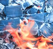 Mnóstwo przypalać, węgiel drzewny, popiół Drzewny właśnie palący puszek Zdjęcie Stock