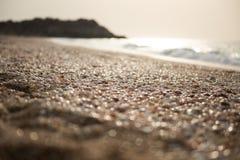 Mnóstwo puści seashells na brzeg morze śródziemnomorskie obraz royalty free