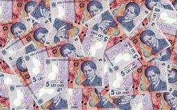Mnóstwo romanian pieniądze Fotografia Royalty Free
