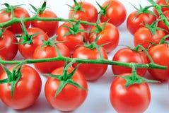 Mnóstwo winogradów pomidory na białym tle (solanum lycopersicum) Obrazy Stock