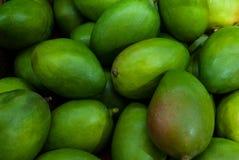 Mnóstwo zielona mangowa owoc jest idealna dla tła obraz stock