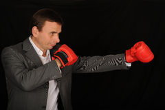 Mn with boxing gloves Royalty Free Stock Image