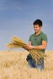 Mna con il mazzo di grano Fotografia Stock Libera da Diritti