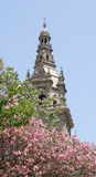 MNAC tower with pink flowers Stock Photography
