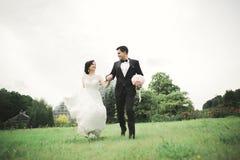 Ménages mariés nouvellement fonctionnant et sautant en parc tout en tenant des mains Images stock