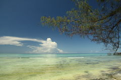Mnarani Zanzibar. Indian ocean at Mnarani, Zanzibar, with shoreline and high tide Royalty Free Stock Photos