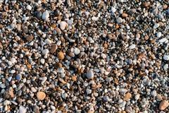 Mång--färgade kiselstenar på stranden Royaltyfria Bilder