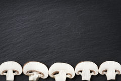 Många champignons som inramar mörk stencopyspace Royaltyfria Bilder