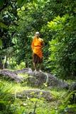 Mnich buddyjski w tropikalnym lesie deszczowym Obrazy Royalty Free