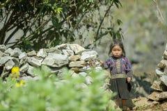 Mniejszości etnicznej dziecko przy starym Dong Van rynkiem, obrazy royalty free