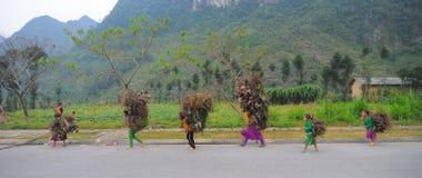 Mniejszości etnicznej kobiety przewożenia trawa stwarzać ognisko domowe Obraz Stock