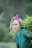 Mniejszości etnicznych kobiety przy płuca krzywka wioską Fotografia Royalty Free