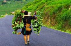 Mniejszościowa kobieta w tradycyjnym kostiumu, porcelana Fotografia Stock