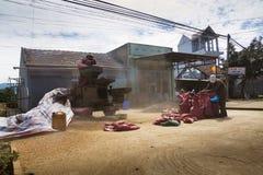 Männer, die an sortierender Maschine der Kaffeebohnen auf Straße am 11. Februar 2012 in Nam Ban, Vietnam arbeiten Stockfotografie